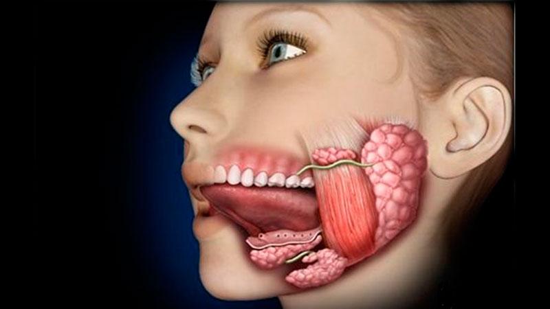 Лечение заболеваний слюнных желез